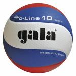 Мяч волейбольный Gala Pro-line 10 №5 матчевый