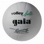 Мяч волейбольный Gala Training (синтетическая кожа)