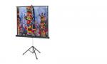 Проекционный экран на штативе Projecta Professional (10430110)