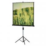 Проекционный экран на штативе Lumien Master View (LMV-100101)