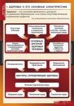"""Таблицы демонстрационные """"Здоровый образ жизни"""""""